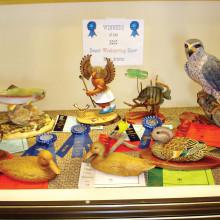 Award winning carvings by the PebbleCreek Woodcarvers Club.