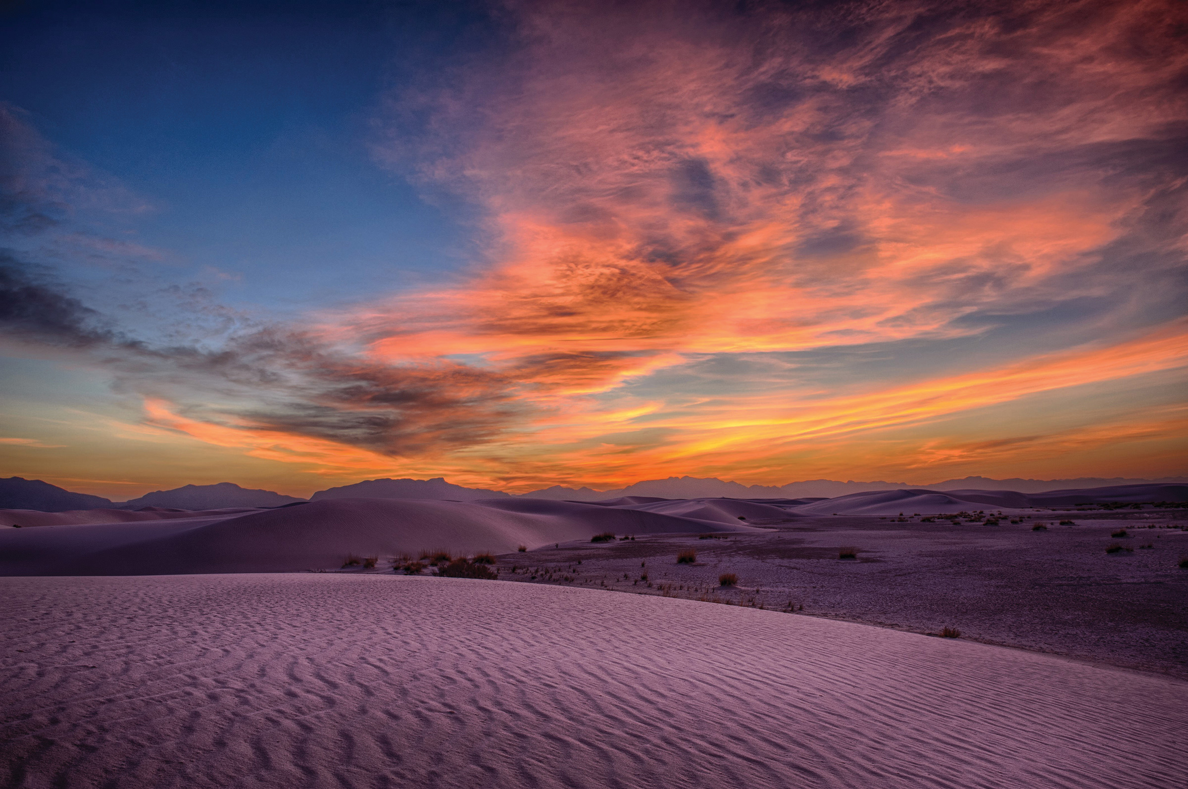 A beautiful example of colors in nature taken by club member Larry Matney at White Sands National Park. See more images at larrymatney.com.