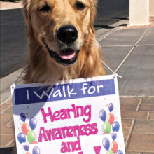 Riley, the golden retriever, will be walking too!